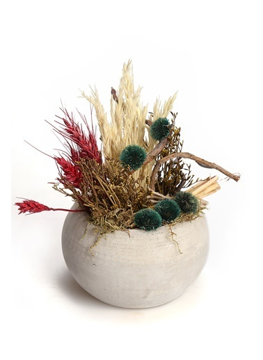 Kibrithane Çiçek Yapay Çiçek Beton Saksı Doğal Kuru Çiçek Aranjman Kc00200832 Renkli